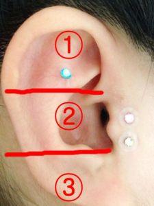 耳の位置_2015